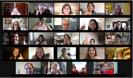 Screenshot of summer institute online group faces